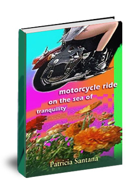 Book- Motocyce Ride on the Sea of Tranquility